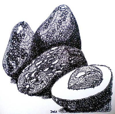 Curly Avocados Art Print