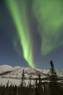 Dalton Highway Photograph - Curtains Of Aurora Borealis Dance by Hugh Rose