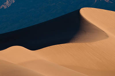 Photograph - Curve In Sand Dune by Michael Blanchette