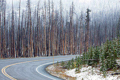 Photograph - Curve On Sylvan Pass by Shari Sommerfeld