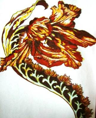 Drawing - Curved Flower by Rae Chichilnitsky
