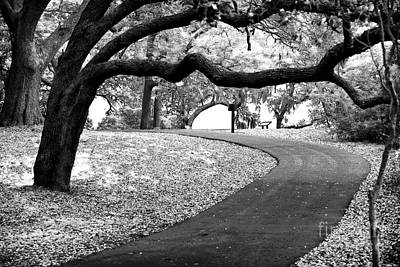 Photograph - Curves Ahead by John Rizzuto
