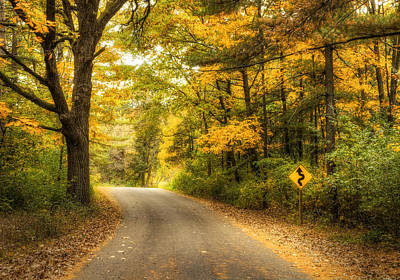 Autumn Leaf Photograph - Curves Ahead by Scott Norris