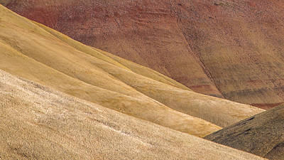 Photograph - Curves And Colors by Joe Hudspeth