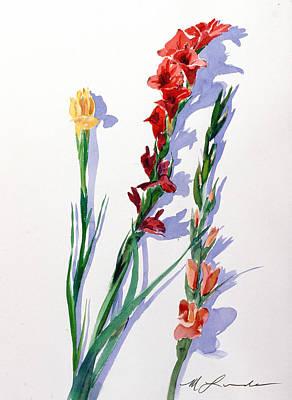 Cut Gladiols Art Print by Mark Lunde