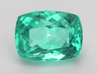 Tourmaline Photograph - Cut Green Paraiba Tourmaline Gemstone by Dorling Kindersley/uig