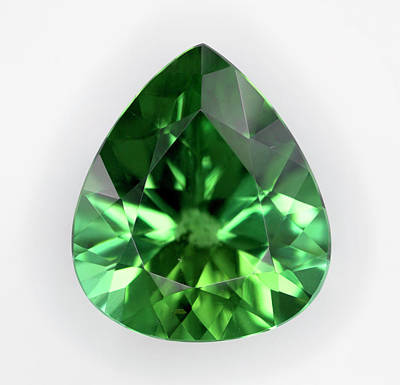 Cut Green Tourmaline Gemstone Print by Dorling Kindersley/uig