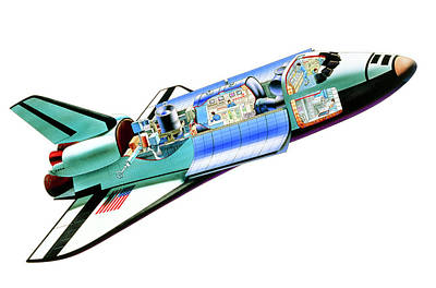 Cutaway Illustration Of Space Shuttle With Crew Art Print