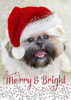 Pups Digital Art - Cute Christmas Card - Shih Tzu In Santa Hat by Natalie Kinnear