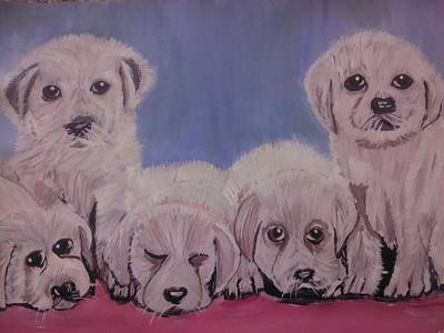 Cute Dogs Original
