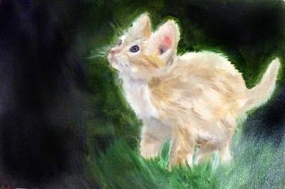 Oil Painting - Cute Kitten by Masaad Amoodi