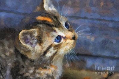 Digital Art - Cute Kitten Oil Painting by Jill Lang