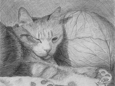 Cabbage Drawing - Cute Sleeping Cat 2 by Raluca Feresteanu