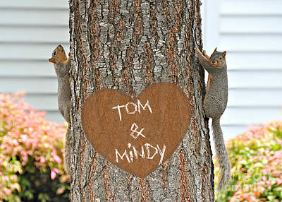 Hearts On Trees Mixed Media - Cute Squirrels Heart On Tree by Mindy Bench