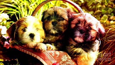 Cute Terrier Puppies Art Print by Marvin Blaine
