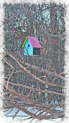 Cutest Little Birdhouse Art Print by Donna Brown