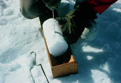Oxygen Wall Art - Photograph - Cutting An Ice Core For Oxygen Isotope Sampling by Simon Fraser/science Photo Library