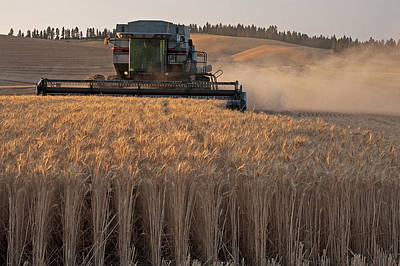Photograph - Cutting On The Palouse by Doug Davidson