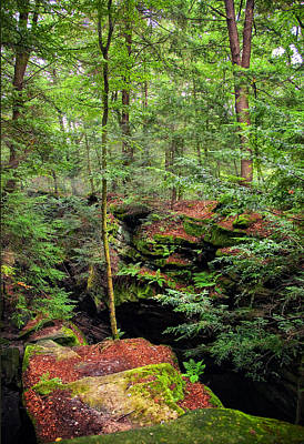 Rural Photograph - Cuyahoga Valley Ledges by Marcia Colelli