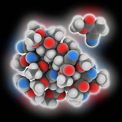 Polymer Photograph - Cyanoacrylate Polymer by Laguna Design