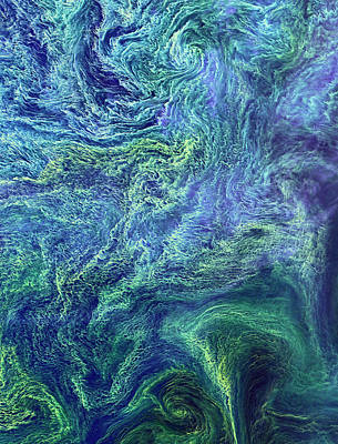 Satellite Image Photograph - Cyanobacteria Bloom by Nasa