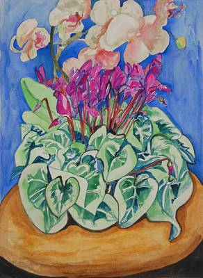 Cyclamen And Orchids In A Flower Pot Art Print