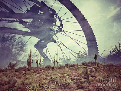 Photograph - Cycling In The Sonoran Desert by Marianne Jensen