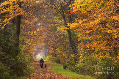 Canandaigua Lake Photograph - Cyclist And Dog by Michele Steffey