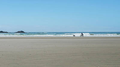Dog On Beach Wall Art - Photograph - Cyclist And Dog On Long Beach, Pacific by Panoramic Images