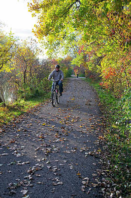 Cyclist In Parkland In Autumn Art Print