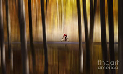 Cyclist In The Forest Art Print