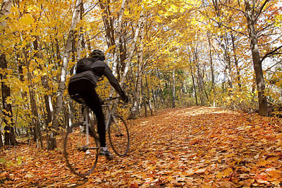 Cyclist Riding In Autumn On Humber Print by Peter Mintz