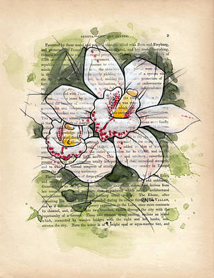 Mixed Media - Cymbidium Flowers by Rudy Nagel
