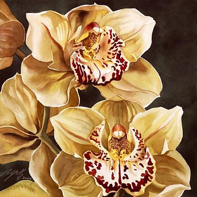 Cymbidium Orchids Art Print by Alfred Ng