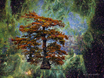 Digital Art - Cypress In All Its Glory by J Larry Walker