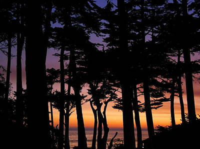 Photograph - Cypress Sunset by Derek Dean