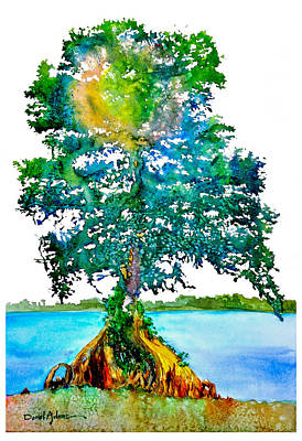 Painting -  Da107 Cypress Tree Daniel Adams by Daniel  Adams