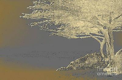 Cypress Tree On Beach Art Print by Linda  Parker