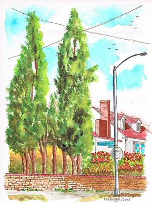 Acuarelas Painting - Cypresses In Massachusett Ave - Westwood - California by Carlos G Groppa