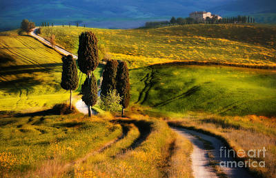 House On The Hill Photograph - Cypresses Of Toscany by Jaroslaw Blaminsky