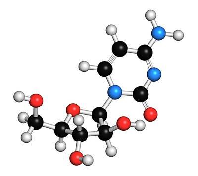 Chemical Photograph - Cytarabine Chemotherapy Drug Molecule by Molekuul