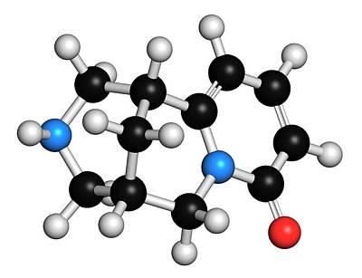 Molecule Photograph - Cytisine Smoking Cessation Drug Molecule by Molekuul