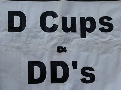 Photograph - D And Dd Cups by Jeff Lowe