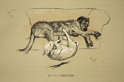 Terriers Drawing - D--nation, 1930, 1st Edition by Cecil Charles Windsor Aldin