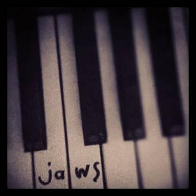 Icon Photograph - Da Dum Da Dum #jaws #piano #icon by Siobhan Macrae