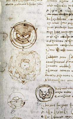 Da Vinci: Earth Art Print