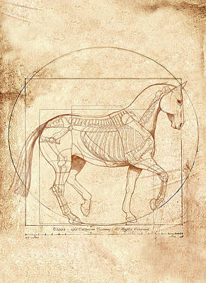 Landmarks Painting Royalty Free Images - da Vinci Horse in Piaffe Royalty-Free Image by Catherine Twomey