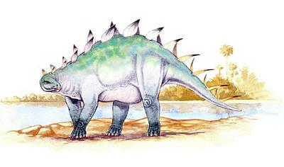 Paleozoology Photograph - Dacentrurus Dinosaur by Deagostini/uig