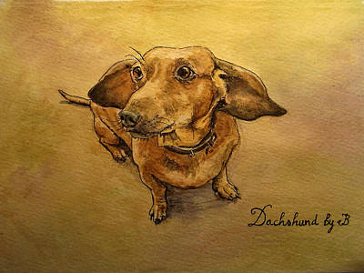 Watercolor Pet Portraits Painting - Dachshund by Juan  Bosco