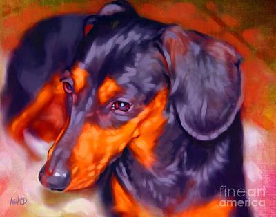Dachshund Digital Art - Dachshund Portrait by Iain McDonald